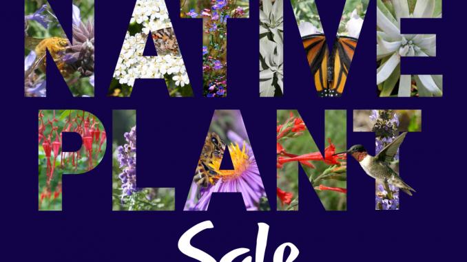 Plant Sale Winter